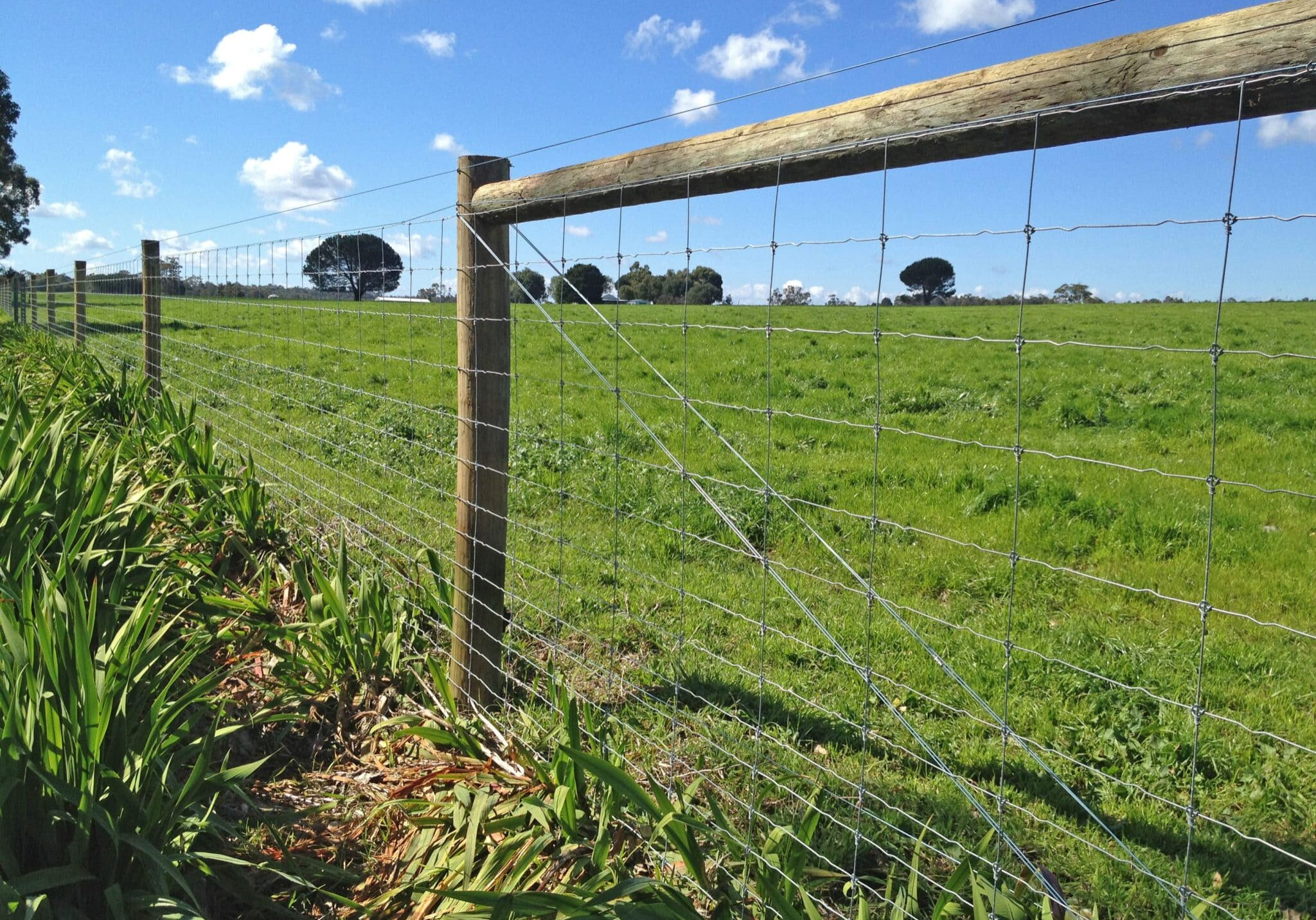 Bull Barn Fence Factory fixed knot wire fencing